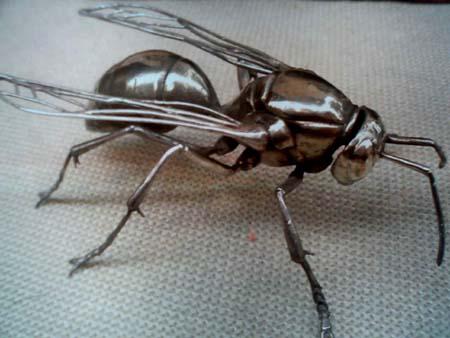 アシナガバチ(Paper wasp) シルバー: アシナガバチ(Paper wasp) rasu